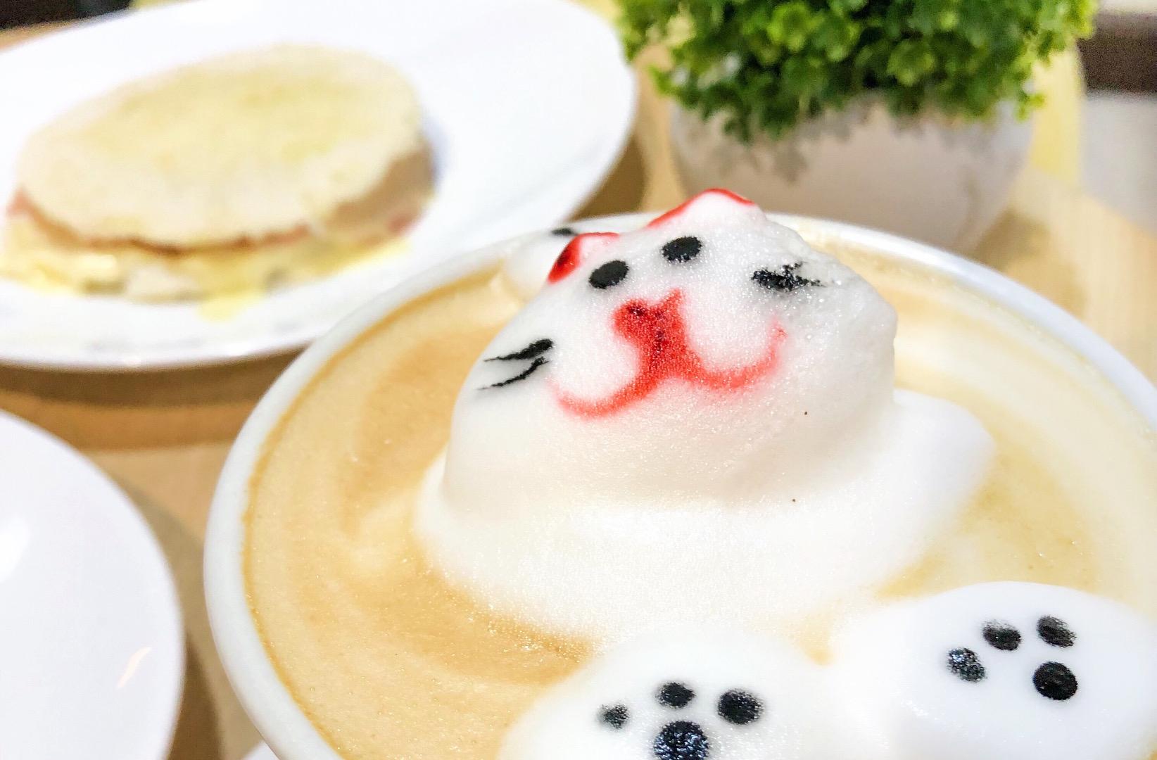Café Haus: latte art, colores y gatitos.